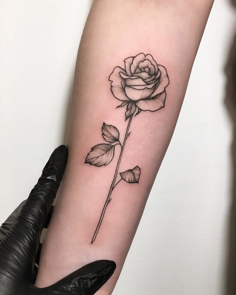 Rose black single men